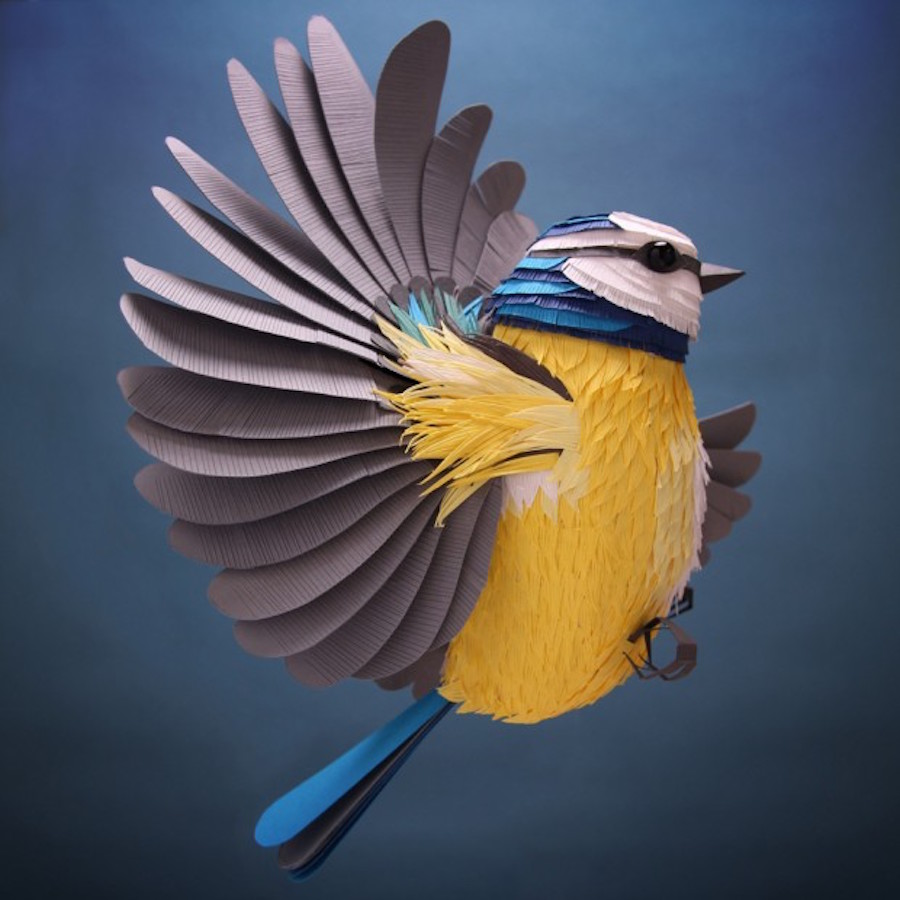 Sumptuous Colored Illustrations with Paper Cutouts