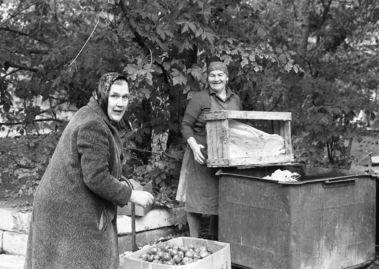 На помойке сегодня дают помидоры