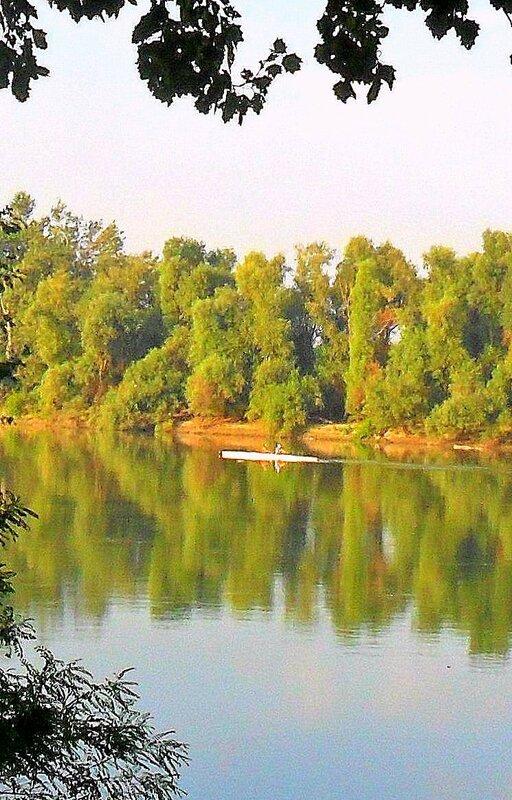 На утренней реке ... SAM_3485 - 1.JPG