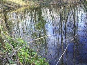 Озеро. Поезія про весну
