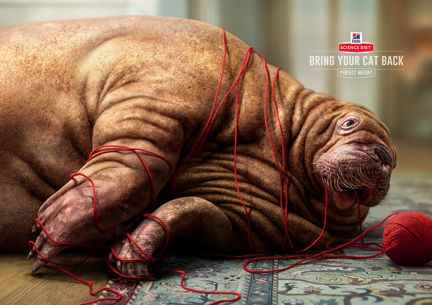 Red Fuse Communications / работы Post-Production References Awards