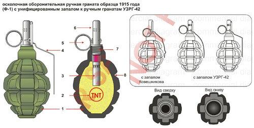 """Почему граната Ф-1 называется """"лимонка"""" и почему она рельефная"""