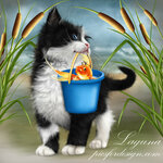 kitten_and_goldfish_2.jpg