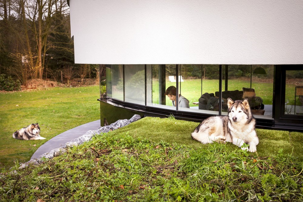 Круглая вилла для семейной пары и их собак