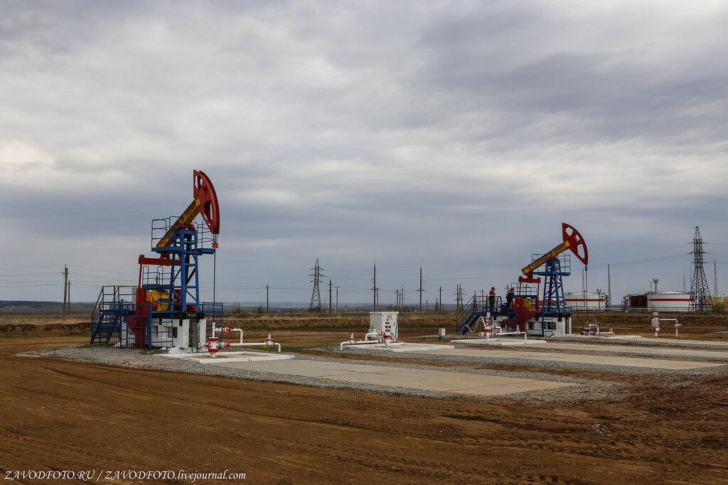 Саудиты начали активно скупать акции европейских нефтегазовых компаний НЕФТЕГАЗОВАЯ