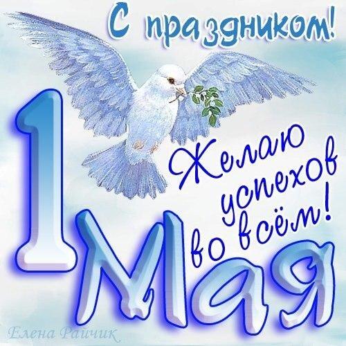 Открытка. С праздником 1 мая! Желаю успехов во всем! Белый голубь открытка поздравление картинка
