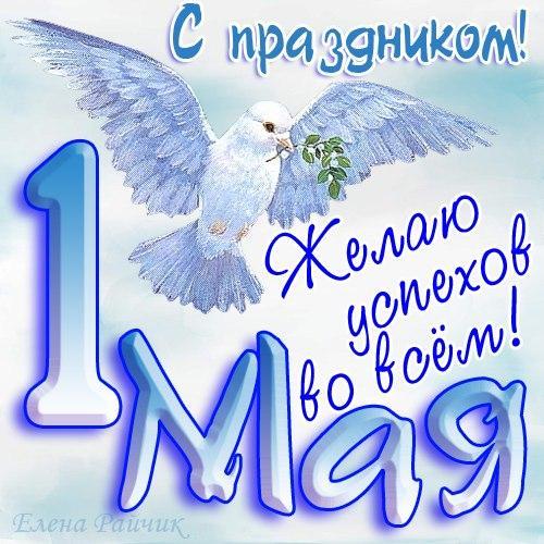 Открытка. С праздником 1 мая! Желаю успехов во всем! Белый голубь открытки фото рисунки картинки поздравления