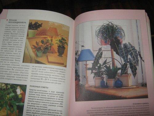 Записная книжка Натальи - Страница 5 0_1c2a92_9bf99e10_L