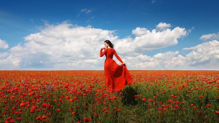 Цветочное безумие Крыма (36 фото)