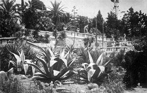 Вид на терасу на переднем плане агавы (орфография сохранена).