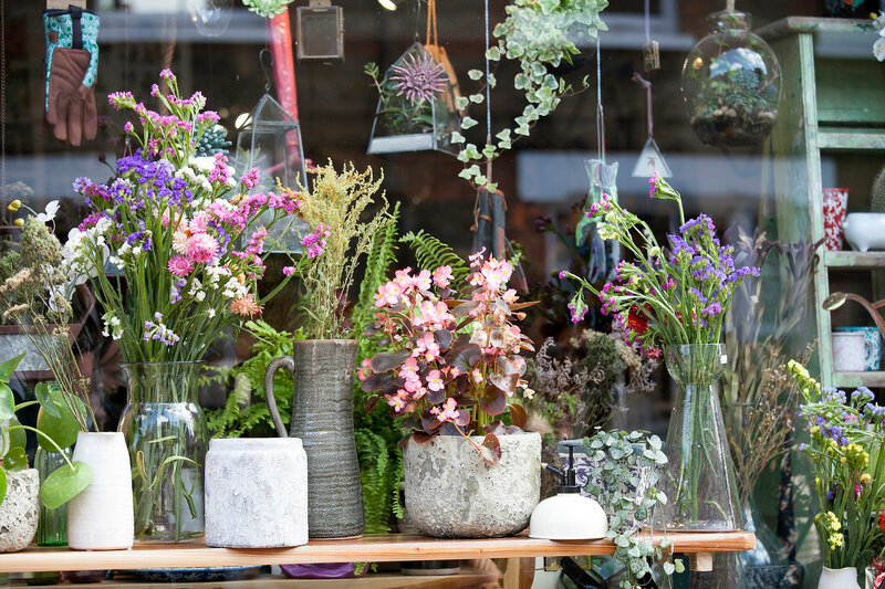 the Bouquets of dried flowers in ceramic vases, begonia in a pot on tables, as an ornament of office space