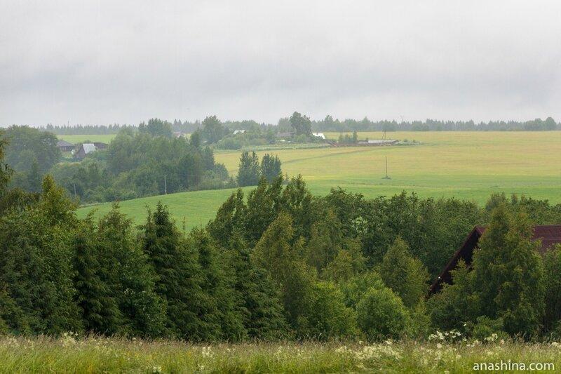 Окрестности деревни Семёнково, Вологодская область