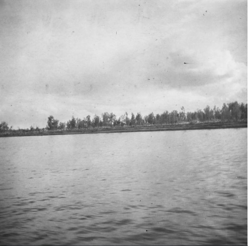Берег реки Обь в районе деревни село Прохоркино