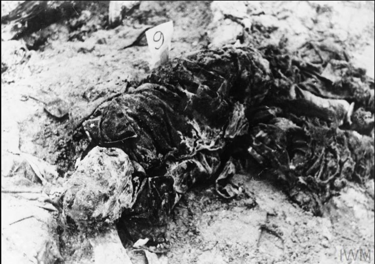 Тело выкопанного из могилы майора польской армии  в ожидании экспертизы