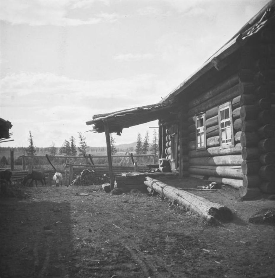 Дом брата шамана