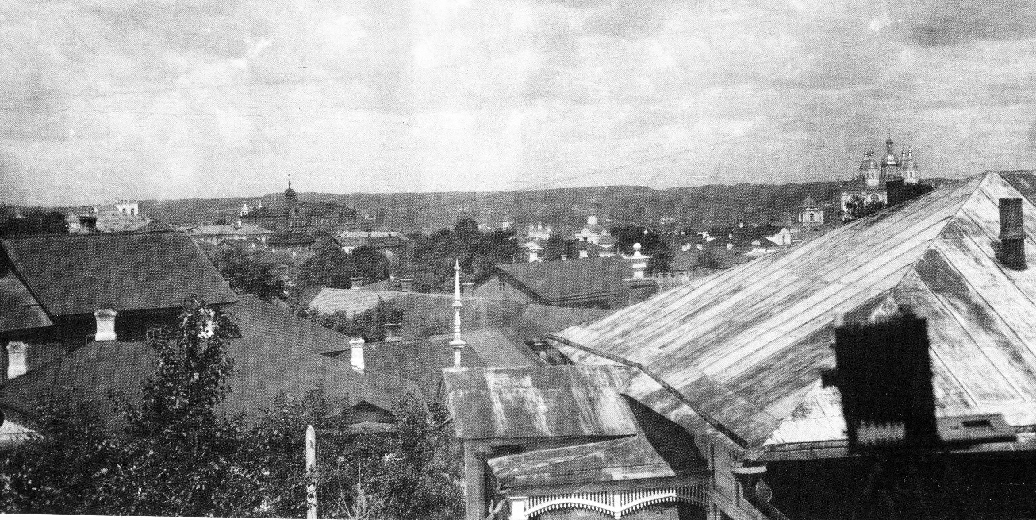 Вид города с Долгочевской башни. 1908