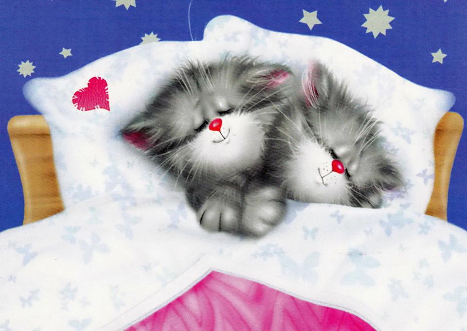 обнажили дерзкие милый спать пора фото открытки аккуратный