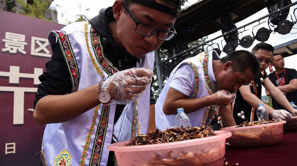 В Китае прошел конкурс по поеданию насекомых