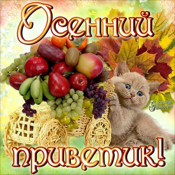 Открытки. Осенний приветик! открытки фото рисунки картинки поздравления