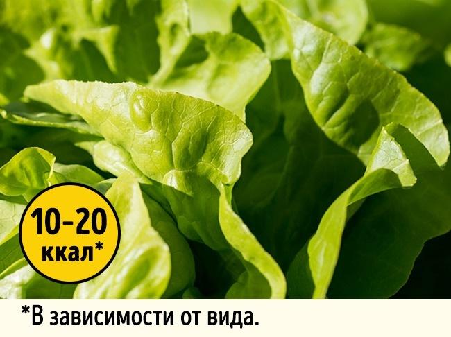 © Pezibear  Всалате содержатся витаминыА иС, атакже фолиевая кислота ижелезо. При этом ра