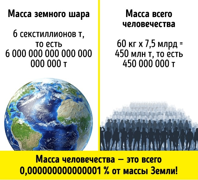 © Pixelchaos/depositphotos  © pablonis/depositphotos  Получается, процент веса всех люде