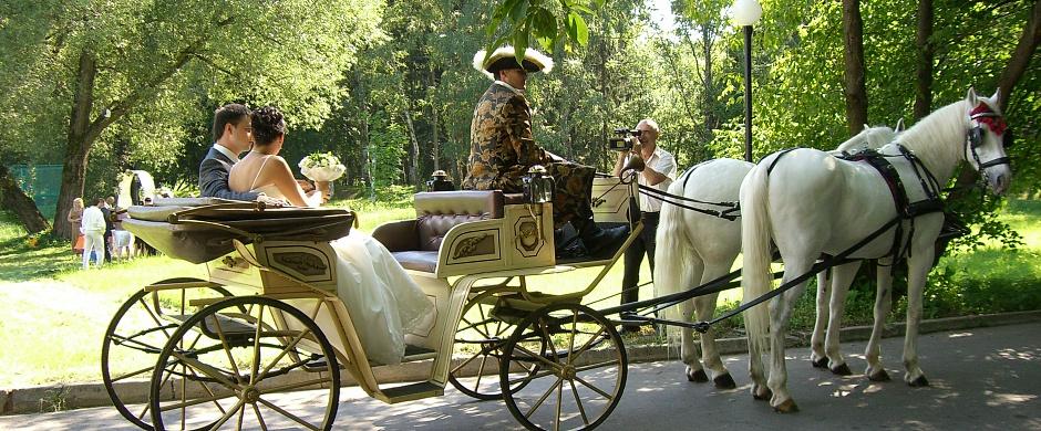 Где провести свадьбу в Подмосковье? (1 фото)