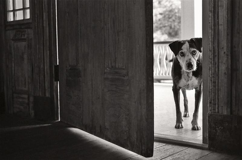 Валли, 14 лет, Ферридей, Луизиана.