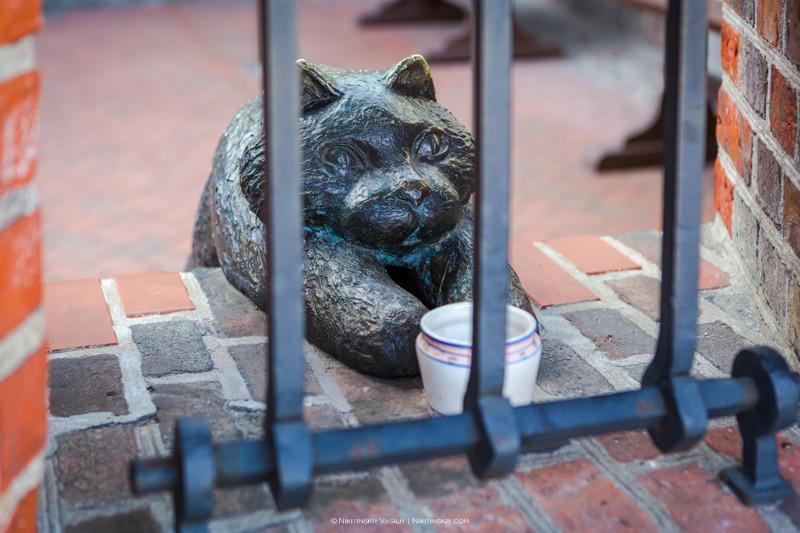 В ворота просто не войдешь, пока на заплатишь мзду прусскому коту. Кот, собака, опасный и высокий!