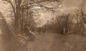 Аллея в городском парке. 1910