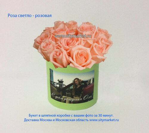 Роза светло-розовая