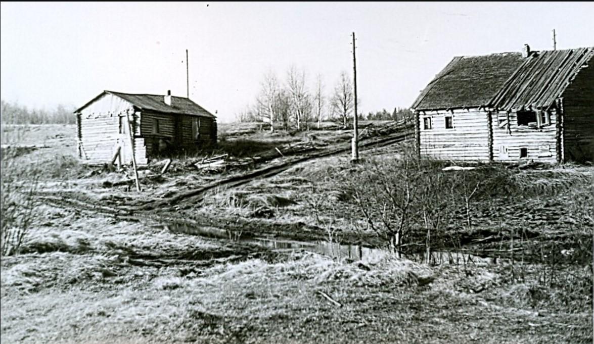 Деревня Владимирская.