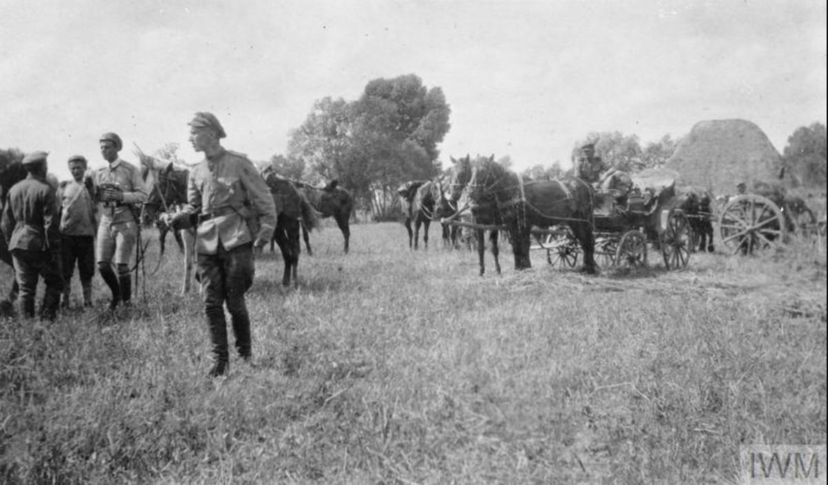 Части Донской армии в поле