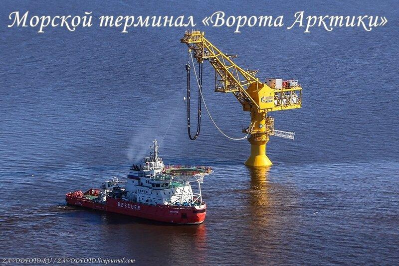 Морской терминал «Ворота Арктики».jpg