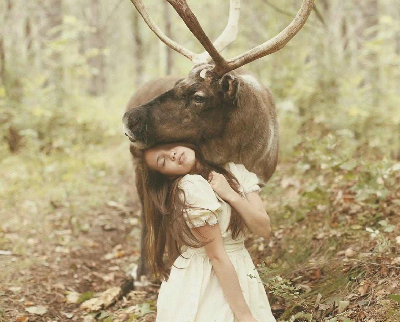 Мифические портреты с дикими животными от Катерины Плотниковой (10 фото)