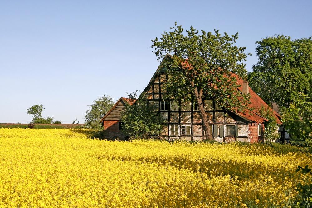 © Depositphotos  Земельные участки: €0 Внебольшой общине вНижней Саксонии проживает около 1