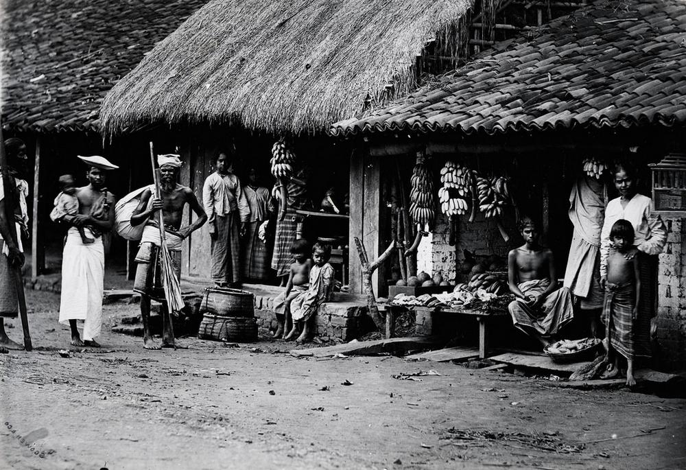 Редчайшие фотографии повседневной жизни Шри-Ланки в 1880-х годах (17 фото)