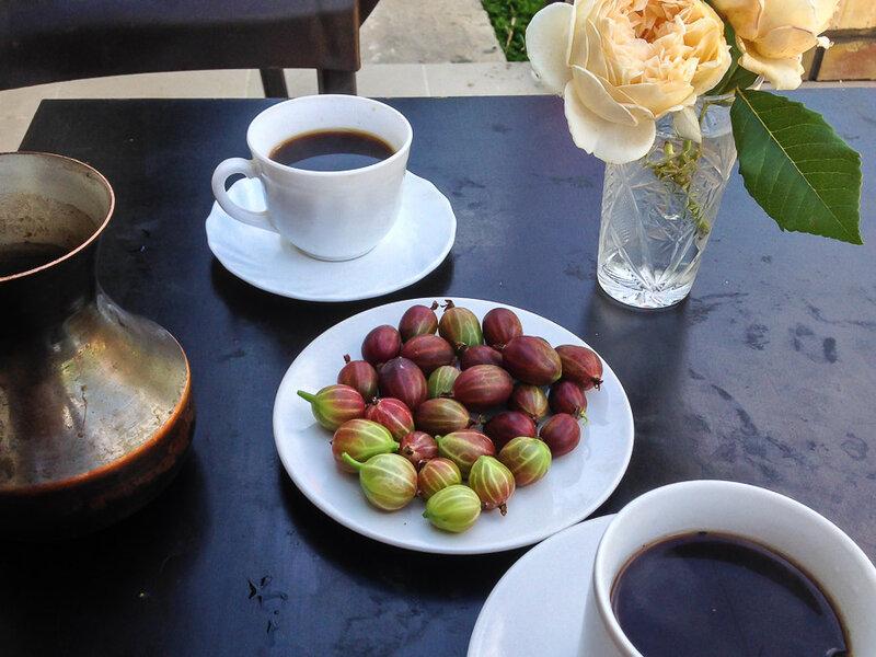 Кофе с крыжовником