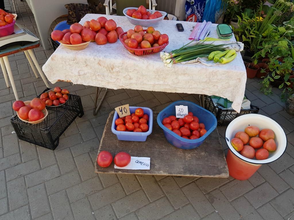 помидоры 1.jpg