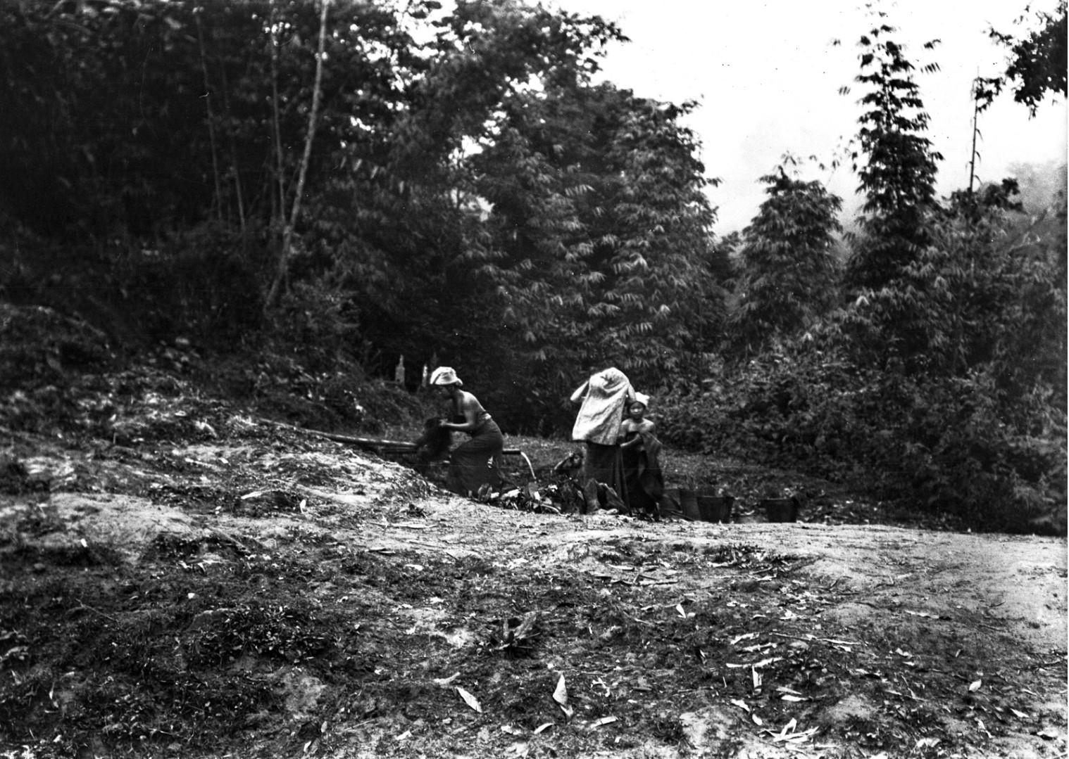 1038. Группа женщин в пруду во время купания