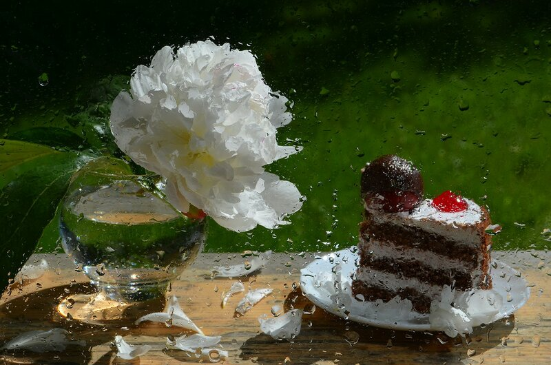 Завтрак в дождливом саду