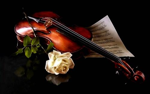 Открытки. С Днем Музыки! Скрипка с розой