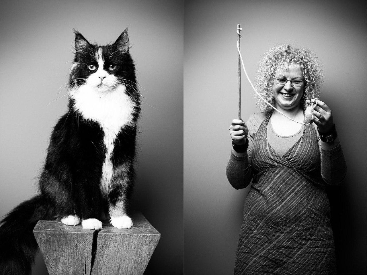 Фотопроект животные похожи на хозяев