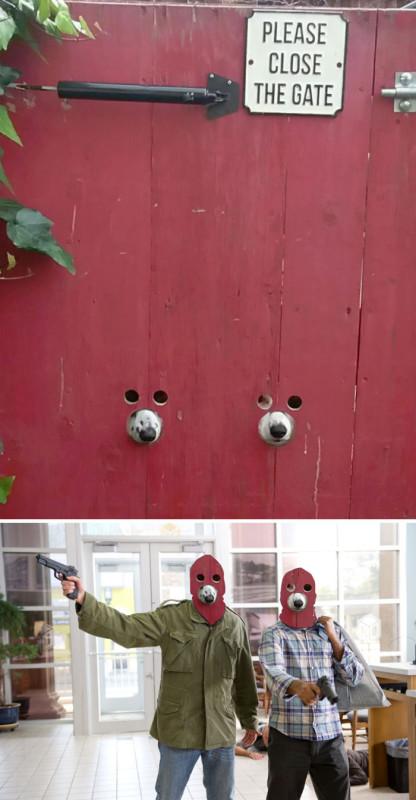 Просто в заборе сделали дырки для собак.