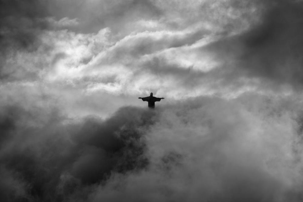 © Pedro Moura Pinheiro  Жизнь полосатая