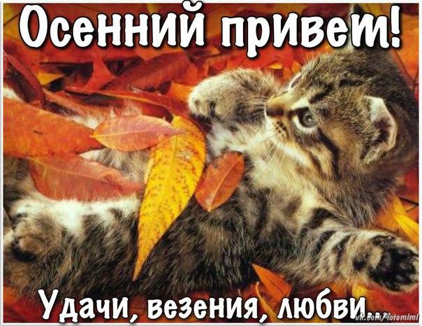 Открытки. Осень. Осенний привет! Удачи, везенья, любви