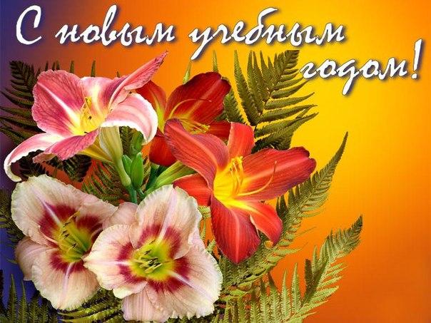 Открытки. Осень. С новым учебным годом! Цветы открытки фото рисунки картинки поздравления