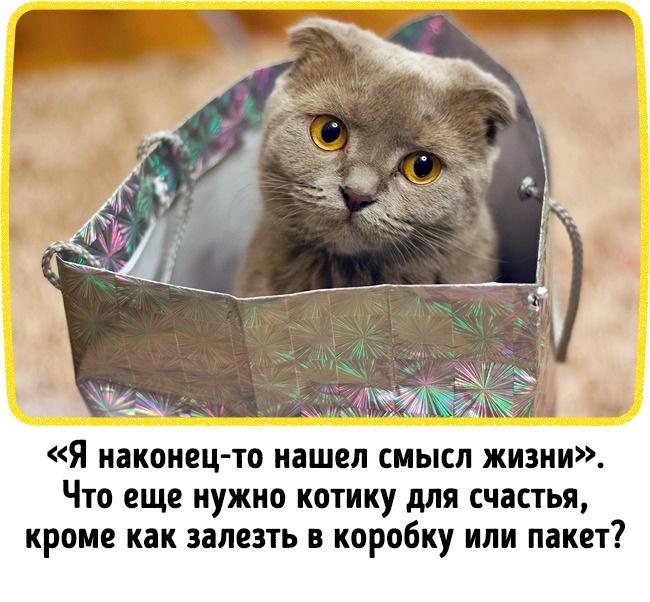 © Pexels.com  © Pexels.com   10.