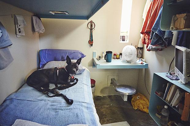 После занятий люди могли отдохнуть с подопечными собаками в своих камерах. По рассказам Дюбуа, они в