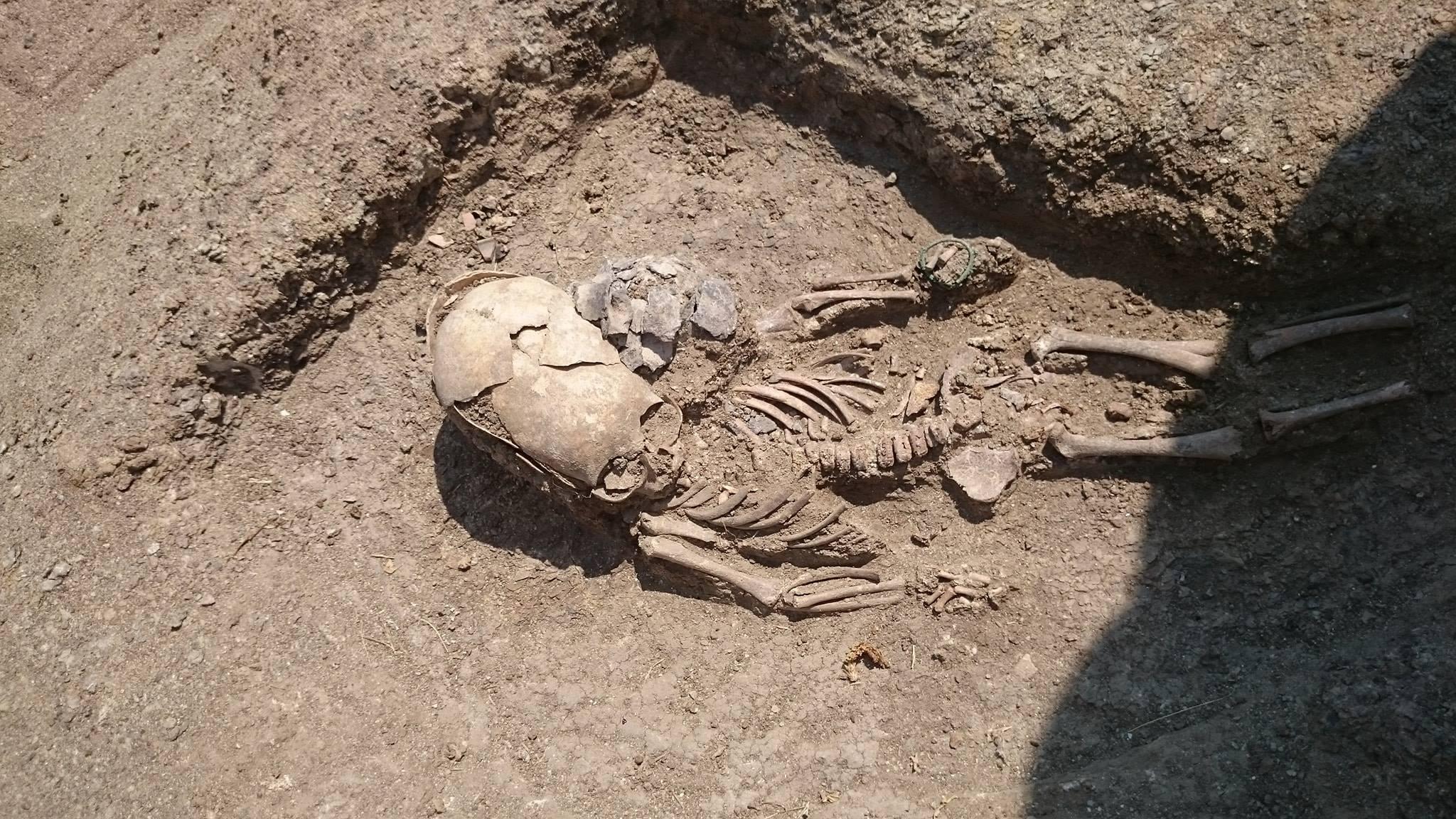 """Из интересных находок на некрполе Кыз-Аул. Захоронение младенца II века н.э. Его необычность заключается в том, что у погребенного по варварской традиции был сильно деформирован череп. Это захоронение сразу окрестили «могилой инопланетянина». Рядом со скелетом был найден сопутствующий материал, состоявший из лепного сосуда, находящегося рядом с головой погребенного, мелких бусин, пастового стекла и браслета медного сплава одетого на правую руку. Само захоронение было произведено в грунтовой могиле без плитного перекрытия. Погребенный лежал головой на восток. По мнению антрополога это был мальчик, и на момент смерти ему было не более 1.5 года. На это указывает не заросшие на черепе роднички. Соответственно его голова подверглась деформации с практически сразу после рождения. В слое где был обнаружен «инопланетянин» встречаются захоронения от I века до н.э. по III век н.э. К этому же периоду относятся и монументальные каменные склепы, которые считают усыпальницами сарматизированной военной знати Боспорского царства. На некрополе Кыз-Аул обнаружено погребение «инопланетянина» The necropolis of Kyz-Aul found a burial """"alien"""""""