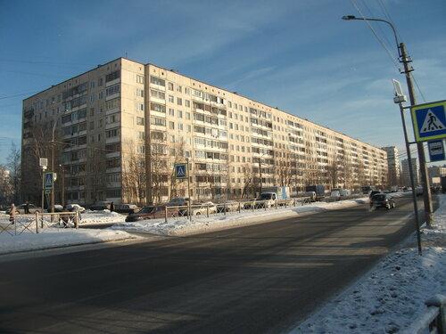 пр. Луначарского 88к1